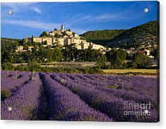 Lavender And Banon Acrylic Print by Brian Jannsen
