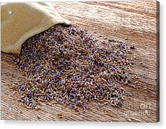 Lavender And Burlap Acrylic Print by Olivier Le Queinec