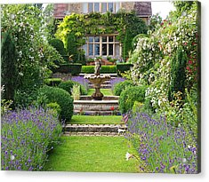 Lavender Country Garden Acrylic Print by Gill Billington