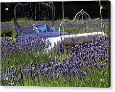Acrylic Print featuring the photograph Lavender Dreams by Cheryl Hoyle