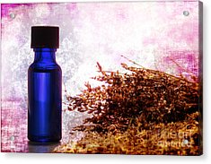 Lavender Essential Oil Bottle Acrylic Print by Olivier Le Queinec