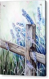 Lavender Fenced Garden  Acrylic Print by Kay Lodahl