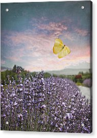 Lavender Field Pink And Blue Sunset And Yellow Butterfly Acrylic Print