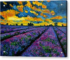 Lavender Fields At Dusk Acrylic Print