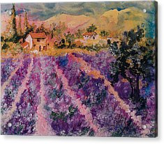 Lavender Fields In Provence Acrylic Print by Elaine Elliott