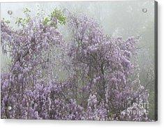 Lavender Fog Acrylic Print by Leslie Kirk