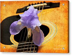 Lavender Iris And Acoustic Guitar - Texture - Music - Musical Instrument Acrylic Print