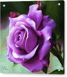 Lavender Lady Acrylic Print