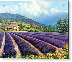 Lavender Acrylic Print by Michael Swanson