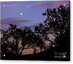 Lavender Moon Twilight Acrylic Print by Gem S Visionary