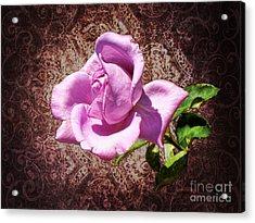 Lavender Rose Acrylic Print by Mariola Bitner