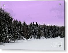 Acrylic Print featuring the photograph Lavender Skies by Bianca Nadeau