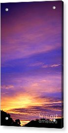 Acrylic Print featuring the photograph Lavender Sunrise by Sue Halstenberg