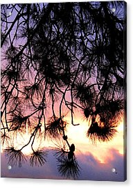 Lavender Sunset Painting Acrylic Print by Will Borden