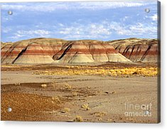 Layers And Landform - The Painted Desert Acrylic Print by Douglas Taylor