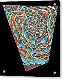 Layers Clvii Acrylic Print