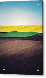Layers Of Colorful Field Acrylic Print by Borchee