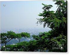 Layers Of Tree Acrylic Print