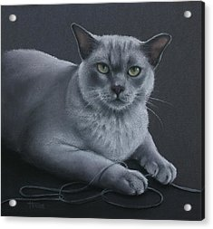 Acrylic Print featuring the pastel Layla by Cynthia House