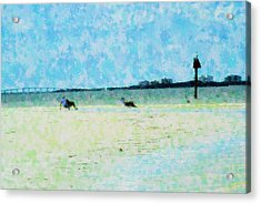 Lazy Beach Day Acrylic Print