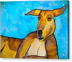 Lazy Roo Acrylic Print by Debi Starr