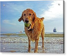 Lazy Summer Days At The Beach Acrylic Print by Nishanth Gopinathan