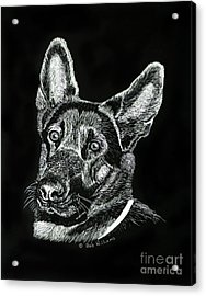 Le Baron Vom Schutzstaffel Acrylic Print