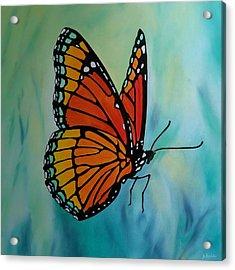 Le Beau Papillon Acrylic Print by Jo Appleby