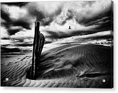 Le Cri Du Goa?land, Le Soir, Au-dessus Des Canisses Acrylic Print