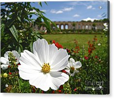 Acrylic Print featuring the photograph Le Fleur De Versailles by Suzanne Oesterling