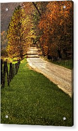 Lead Me Home Acrylic Print by Andrew Soundarajan