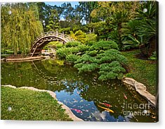 Lead The Way - The Beautiful Japanese Gardens At The Huntington Library With Koi Swimming. Acrylic Print by Jamie Pham