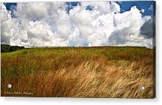 Leaden Clouds Over Field Acrylic Print by Deborah Klubertanz