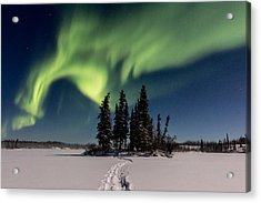 Leading The Way Acrylic Print by Valerie Pond