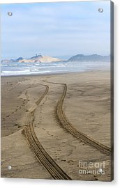 Leading To The Cape Acrylic Print by Mike Dawson