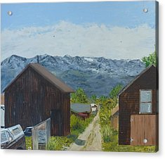Leadville 2 Acrylic Print by John Terry