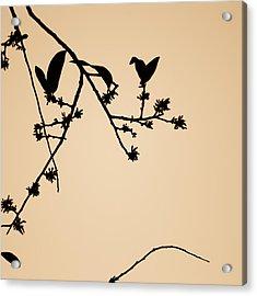 Acrylic Print featuring the photograph Leaf Birds by Darryl Dalton