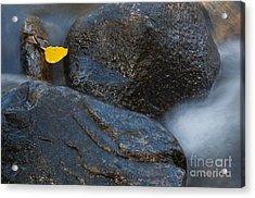 Leaf Bridge One Acrylic Print by Vinnie Oakes