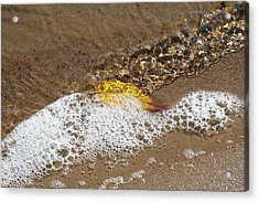 Leaf In Foamy Water Acrylic Print by Carolyn Reinhart