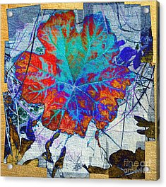 Acrylic Print featuring the mixed media Leaf   by Irina Hays