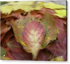 Leaf On Leaves 1 Acrylic Print