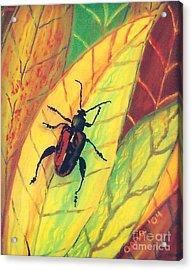 Leaf Surfer Acrylic Print by Anna Skaradzinska