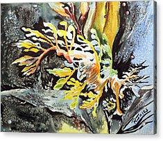 Leafy Dragon Acrylic Print