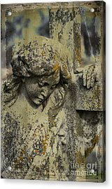 Lean On Me Acrylic Print by Terry Rowe