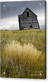 Leaning A Little Acrylic Print by Bob Christopher