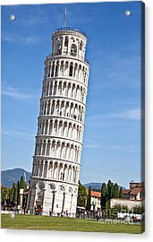 Leaning Tower Of Pisa Acrylic Print by Liz Leyden