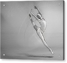 Leap Acrylic Print by H James Hoff