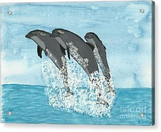 Leaping Dolphins Acrylic Print by Tracey Williams