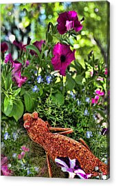 Leaping Lizards Acrylic Print by Sylvia Thornton
