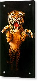 Leaping Tiger Acrylic Print